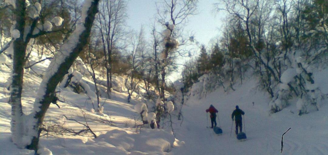 talvi_hiihtovaellus_bytimokorhonen-1